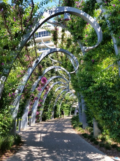 South Bank Arbour